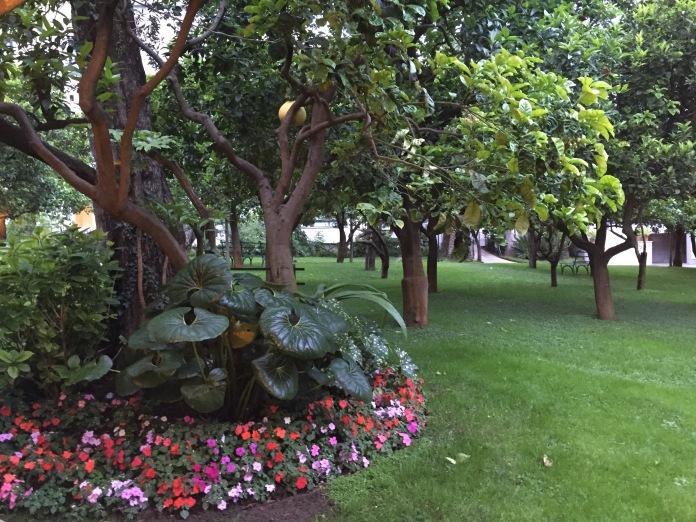 Il profumatissimo agrumeto di un hotel che ho nel cuore: l'Hilton Sorrento Palace